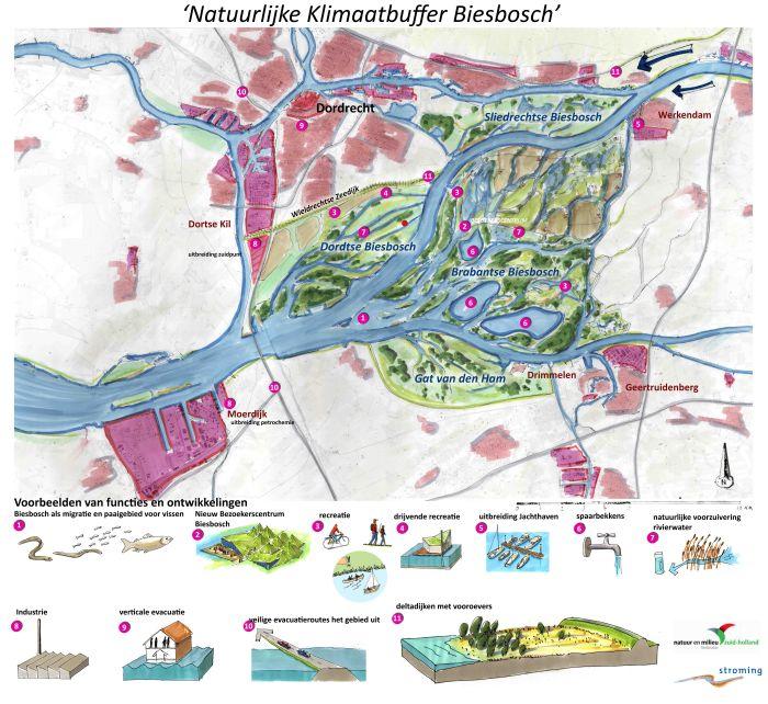 20140905_Natuurlijke Klimaatbuffer Biesbosch_concept_